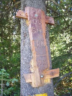 Bear Chewed Sign Bob Marshall